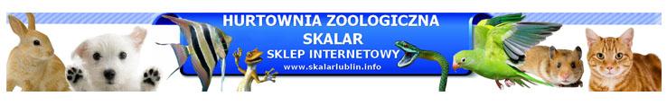 Hurtowna zoologiczna Skalar
